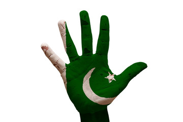 palm flag pakistan