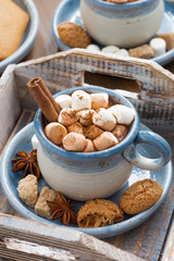 cocoa with marshmallows, cinnamon and spices on a wooden tray