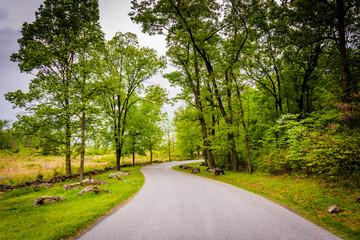 Road through battlefields at Gettysburg, Pennsylvania.