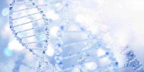 Molecule of DNA