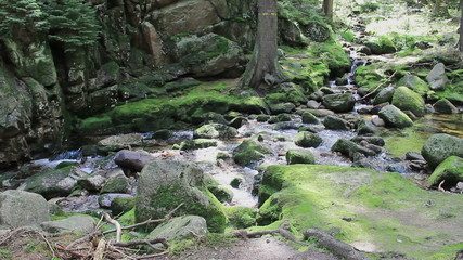 Magical mountain brook with a mossy rocks in the forest