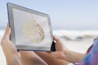 Woman sitting on beach in deck chair using tablet pc