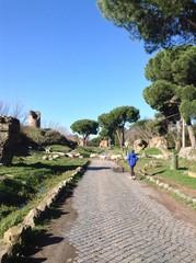 gregge che attraversa la strada sull'Appia Antica