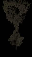 Explosion champignon atomique