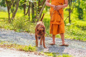 Dog and monk.