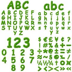 Conceptual green grass font