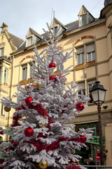 Beautiful white Christmas tree with red ornaments in town square