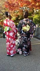 Jeunes filles en kimono dans les rues de Kyoto, Japon