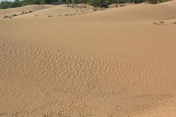Sand texture at Phan Thiet, Vietnam