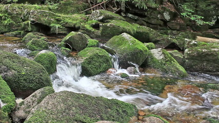 Beautiful mountain brook with a mossy rocks