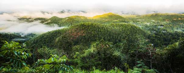 Landscape of green mountain and fog in the morning