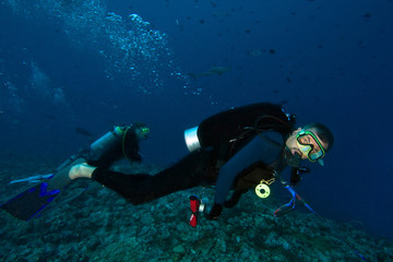 Scuba divers using a reef hook to watch sharks