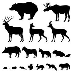 illustration animals of european forest icon set of silhouette. Black Bedroom Furniture Sets. Home Design Ideas