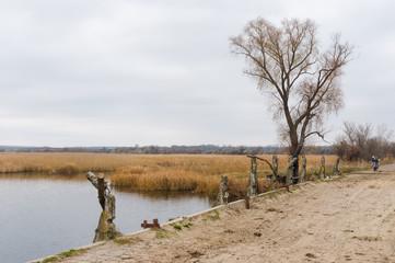 Late autumnal landscape in central Ukrainian rural area