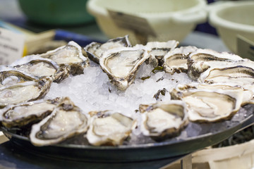 platter of freshly opened oysters