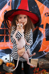 Little girl Witch with cat on Halloween decorations background