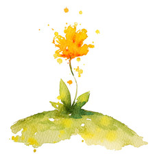 hand painted yellow watercolor flower