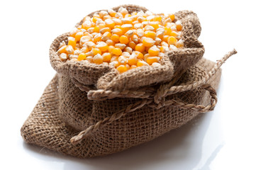 corn in burlap bag on white background