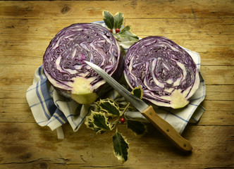 Brassica oleracea Have-Kål Red cabbage Expo Milano 2015 food