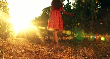 Pretty Barefoot Woman Walking Toward Sunset at Vineyard Freedom