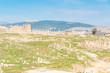 Landscape stones and grass prospect ruins of Jerash