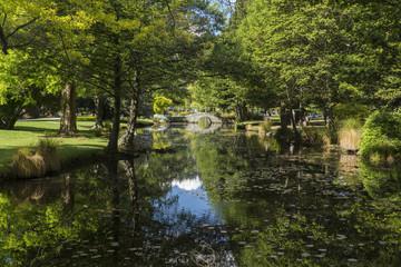 Queenstown gardens. New Zealand