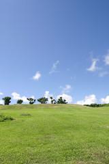 草原 沖縄