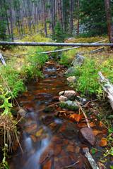 Beautiful Montana Stream