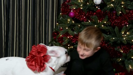 Boy being kissed by the puppy he got for Christmas