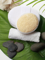 spa set on the green leaf its come from natural
