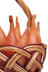 Onion shallot