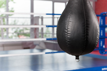 Interior of spacious gym with punching bags