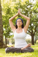 Fit brunette sitting in lotus pose in the park