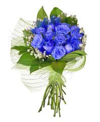 bunch of blue rose flowers isolated on white