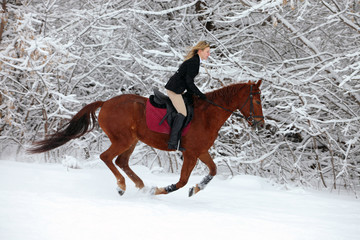 Winter riding on the in open air