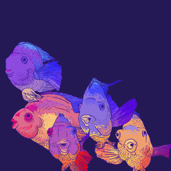Colorful Greeting Card with Fish
