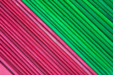 Close view of new craft sticks in holiday hues