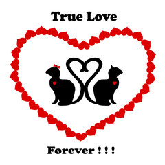 Cats True Love Forever Black and Red