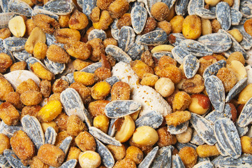 Salted sunflower seeds and corn grains
