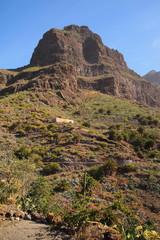 mountain landscapes of gorges maska