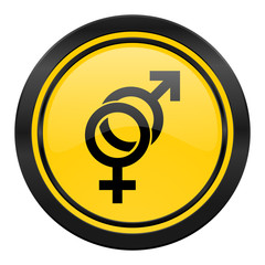 sex icon, yellow logo, gender sign