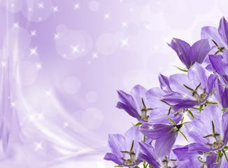 lilac bells