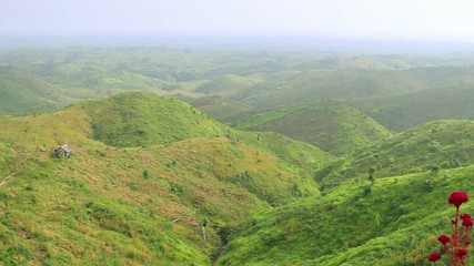 mountains covered with green vegetation
