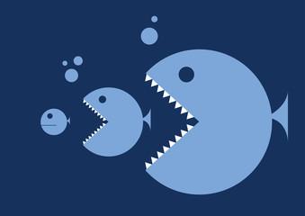 pesci, pesce grande pesce piccolo
