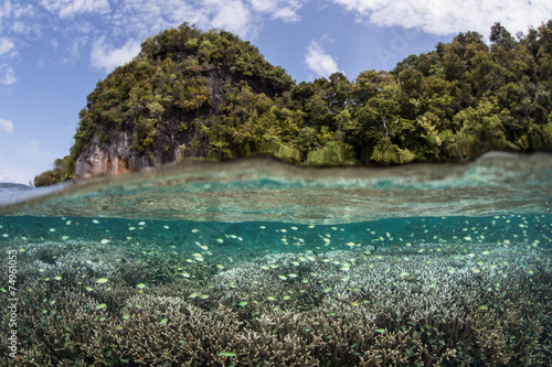Foto op Canvas Indonesië Limestone Island and Shallow Reef