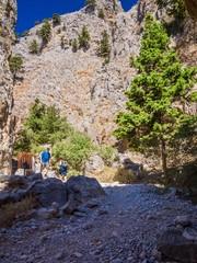 Steinige Weg durch die Imbros-Schlucht