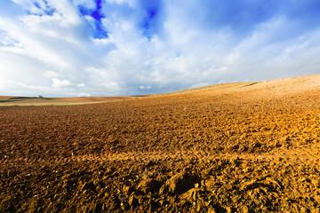 idle field