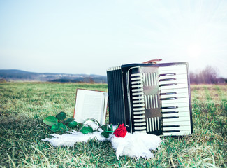 Accordion on a meadow
