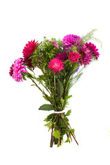 a bouquet of asters