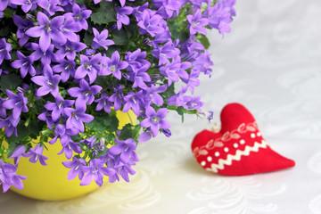 Niebieskie dzwonki i czerwone serce